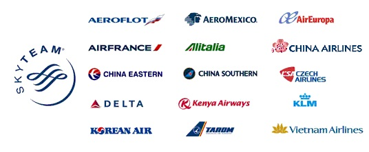 Image result for skyteam