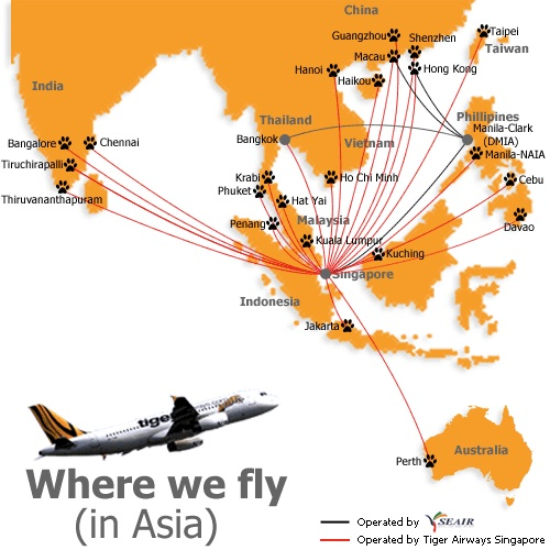 Tiger Airways drops its plan to form a Thai joint venture | World ...
