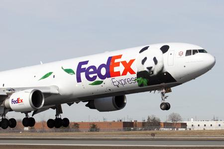 FedEx Express MD-11F N585FE (94-Panda)(Nose) YYZ (FedEx)(LRW)