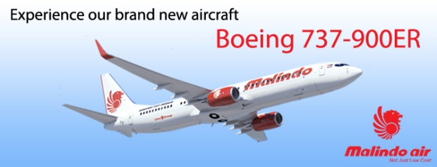 Malindo Air 737-900ER logo