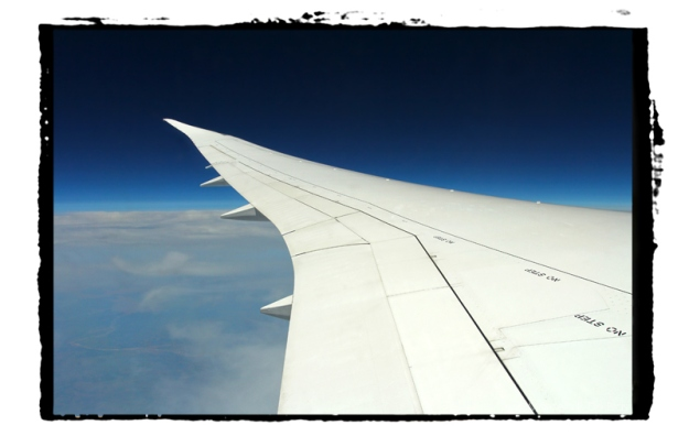 United 787 Trip 6