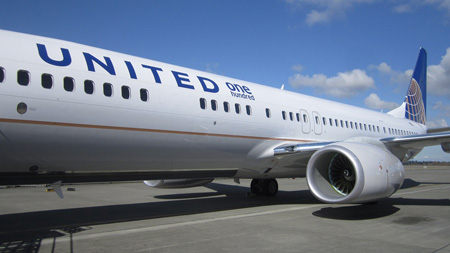 United 737-900ER One Hundred logo (United)(LRW)