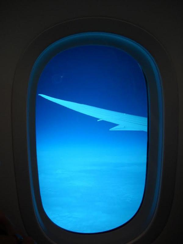 Air Canada 787-8 C-GHPQ window (TMK)(LRW)