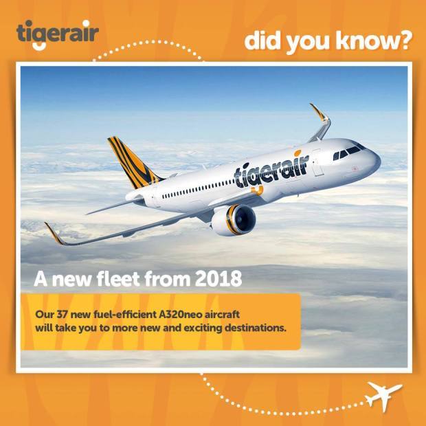 Tigerair Did You Know?