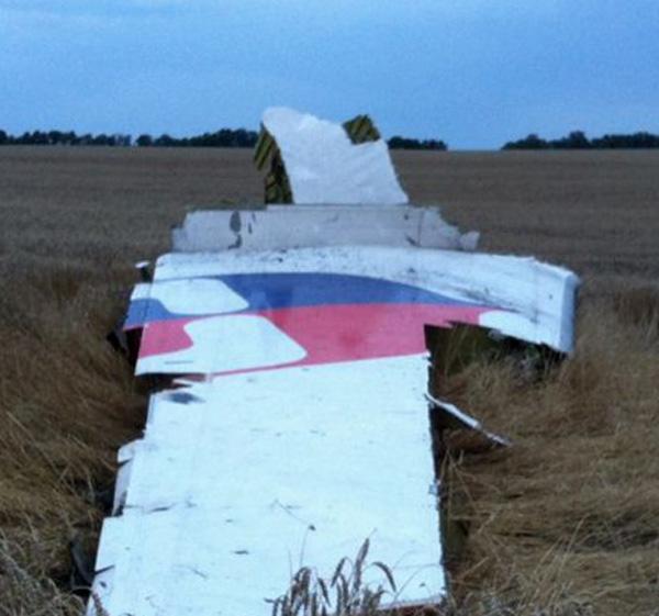 Malaysia MH 17 Tail Debris (LRW)