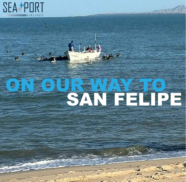 SeaPort to San Felipe, Mexico (LRW)