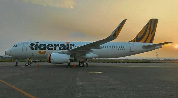 Tigerair (Taiwan) A320-200 WL B-50001 (13)(Grd)(Tigerair)(LRW)