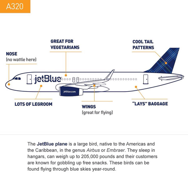 JetBlue A320 Thanksgiving