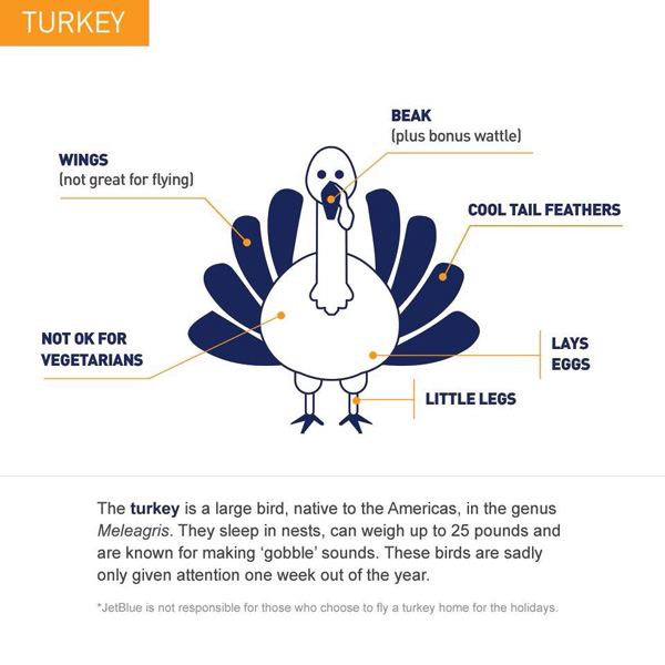 JetBlue Turkey Thanksgiving