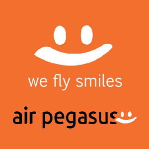 Air Pegasus (India) logo