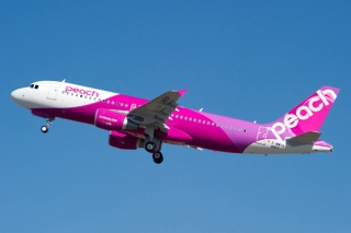 Image result for peach airplane at okinawa