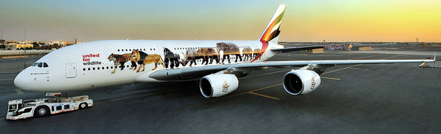 Emirates A380-800 A6-EEI (15-United for Wildlife)(Grd)(Emirates)(LR)