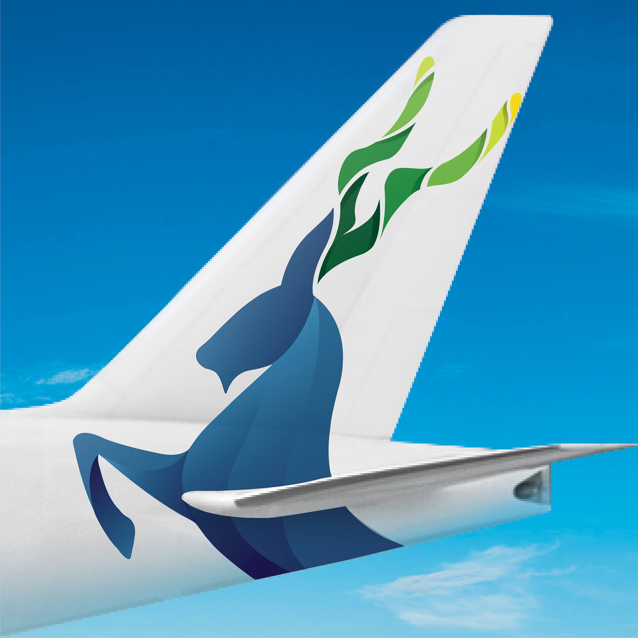 Pakistan international airlines introduces a new livery for Latest design news