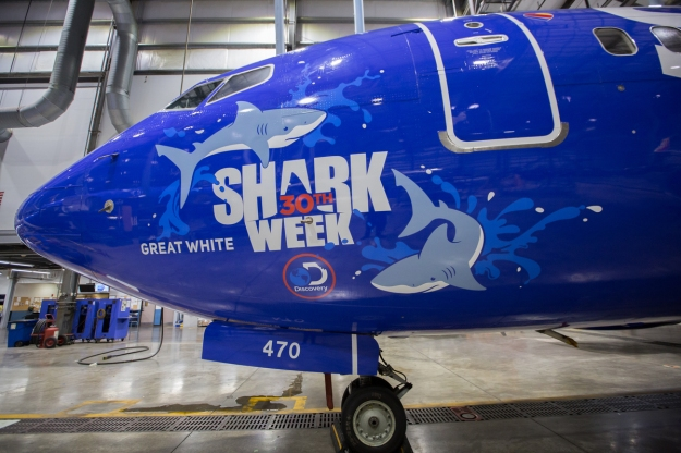 southwest shark week sweepstakes southwest airlines unveils 5 logo jets for shark week 6238